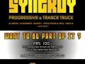 20110709-synergy